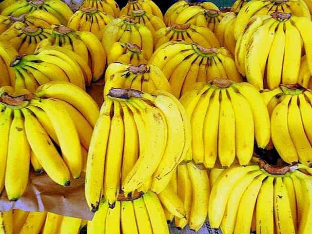productores de banano en Ecuador